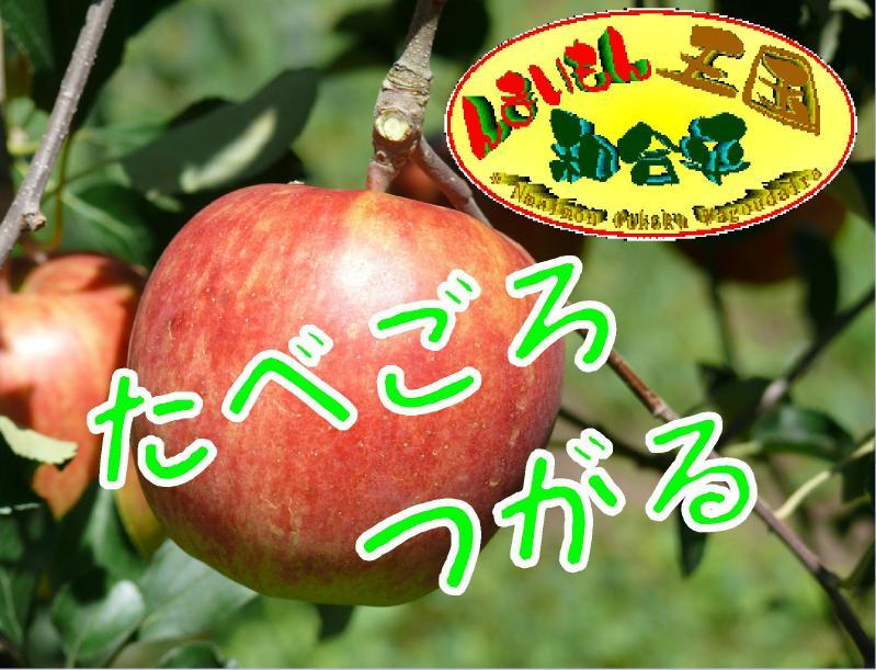 りんご-1.JPG